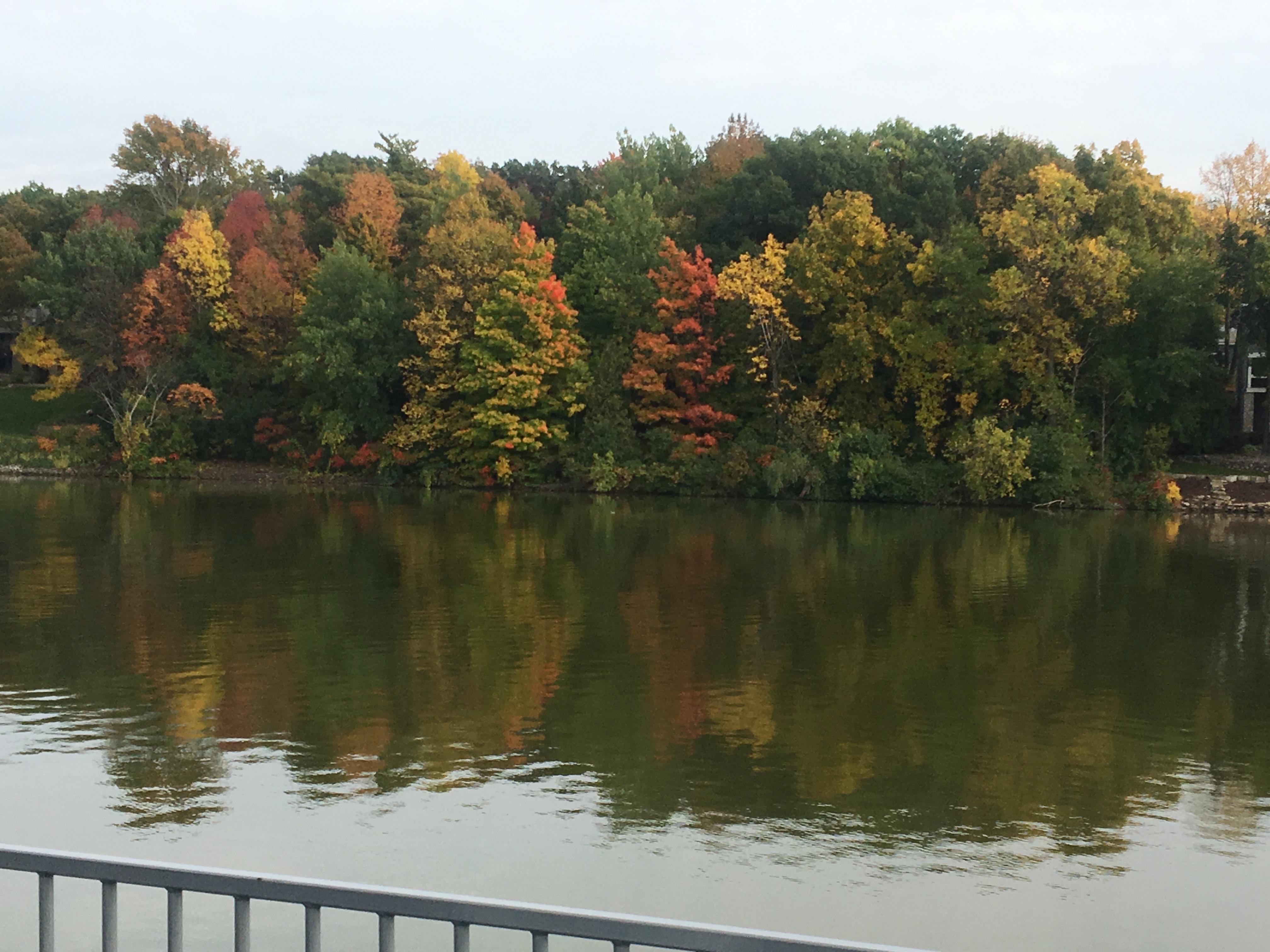 Fall Colors along Fox River